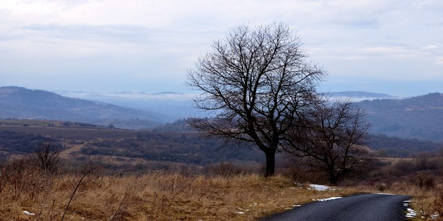 Krajina Doupovských hor a Krušných hor. Foto: Martin Volf